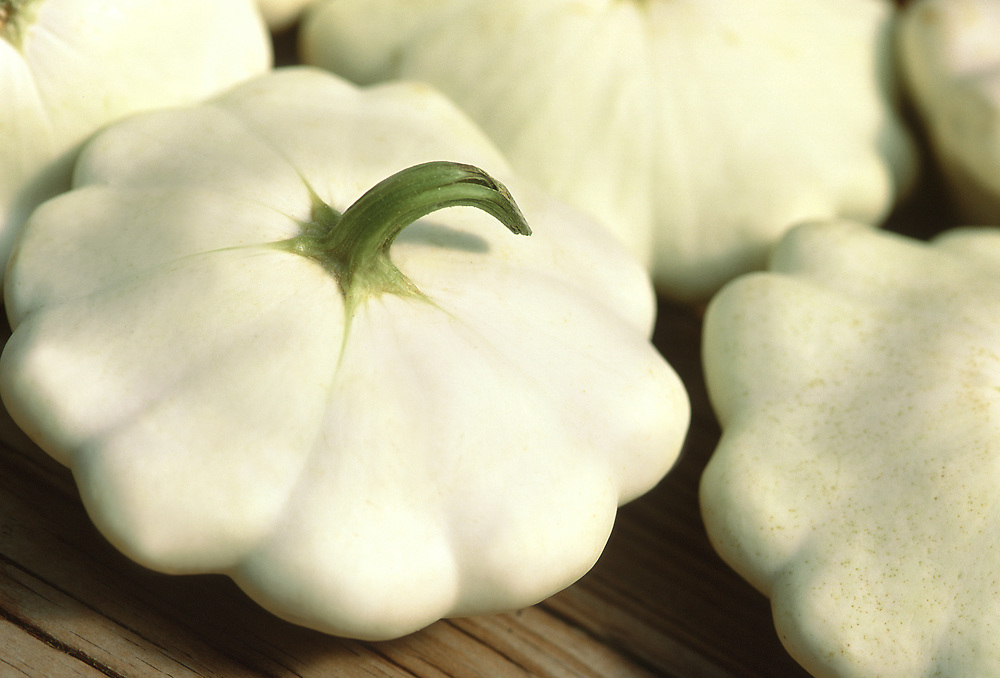 Close up selective focus photograph of a few Pattypan Squash on a table