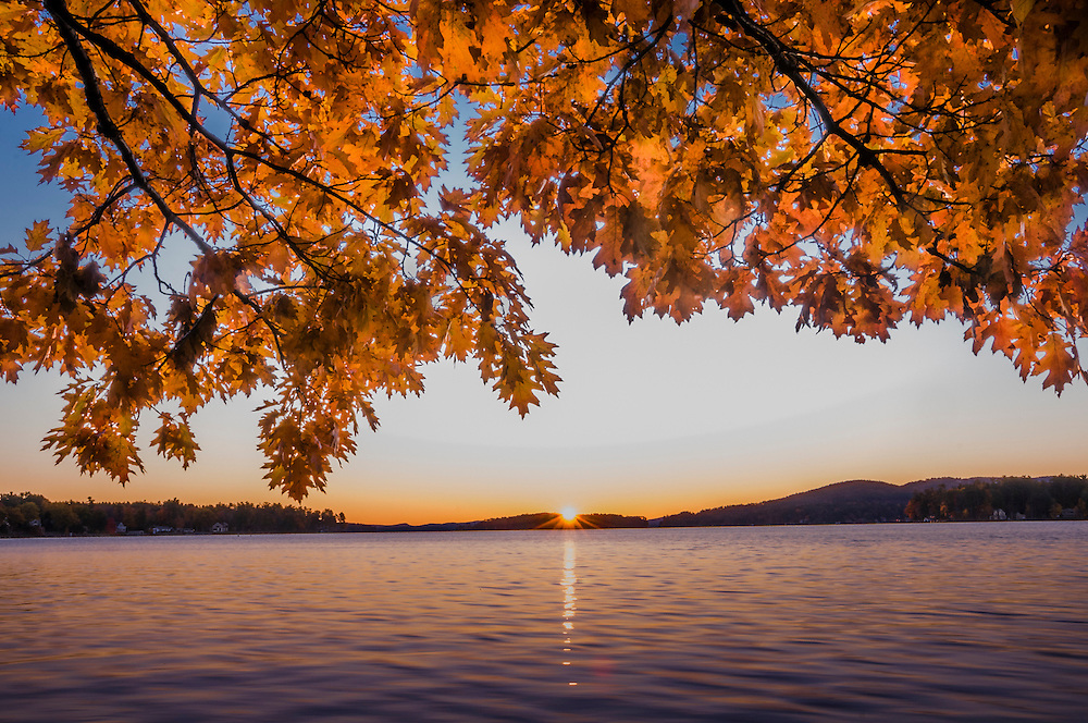 Sunrise over mountains and reflected in Lake Winnipesaukee, with overhanging oak branches in fall color, Laconia, NH