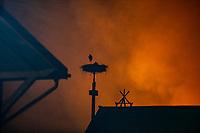Biebrzanski Park Narodowy, 22.04.2020. Olbrzymi pozar w Biebrzanskim Parku Narodowym. Od niedzieli ( 19.04 ) plonie tam ok. 1400 hektarow lak, torfowisk, trzcinowisk i lasu. Gaszenie pozaru moze potrwac nawet pare dni. BPN jest najwiekszym polskim parkiem narodowym, maja tu swoja ostoje m.in losie oraz liczne gatunki ptakow. W nocy z 21/22.04 zagrozona przez ogien byla wies Dawidowizna N/z bocian na gniezdzie we wsi Dawidowizna fot Michal Kosc / AGENCJA WSCHOD