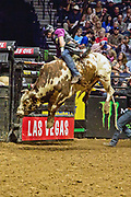 Ramon De Lima riding during the 25th Professional Bull Riders  Unleash the Beast Music City Knockout in Nashville, Tenn., Saturday, Aug 18, 2018. (Michelle Donovan/Image of Sport)