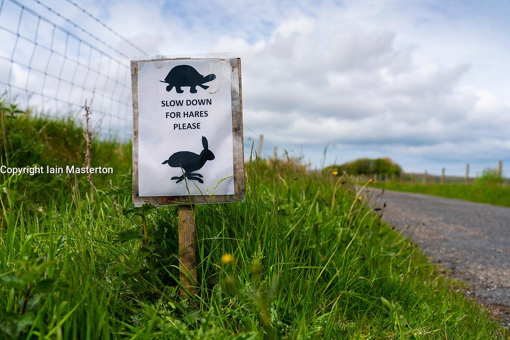 Sign beside single track road warning of presence of hares , Islay, inner Hebrides, Scotland, UK