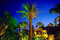 Andalusian garden, Palais Jamai (luxury hotel), Fez (Fes), Morocco