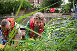 © Licensed to London News Pictures. 03/07/2013. London, UK. London Wildlife Trust volunteers are seen at work creating part of a floating meadow on Regent's Canal in London today (03/07/2013). The meadow, a venture between the London Wildlife Trust and the Canal & River Trust, will be 66 metres long when finished and is intended to try and boost London's struggling bee population. Photo credit: Matt Cetti-Roberts/LNP