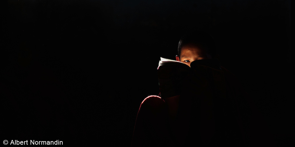 Young Monk studies a book in window light, distracted looking at camera