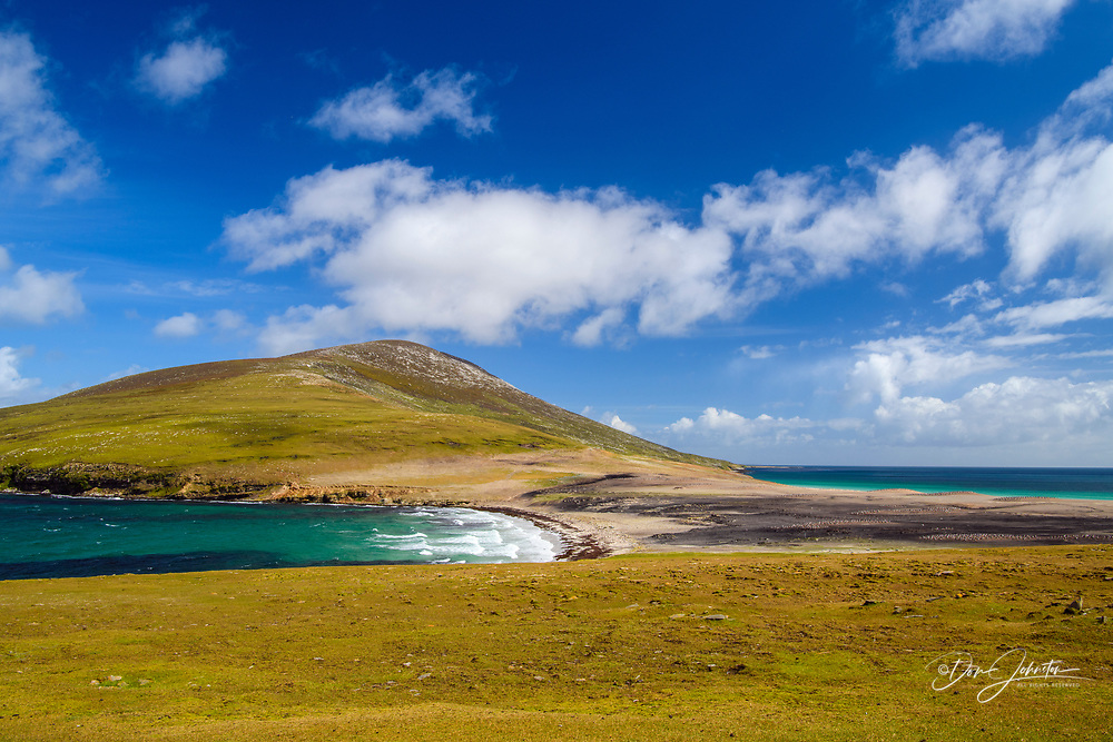 Elephant Point at The Neck, Saunders Island, West Falkland, Falkland Islands