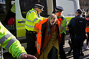 A climate change protester is detained by police officers in Whitehall, on 14th November 2018, in London, England.