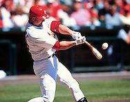 "ST. LOUIS, MO-SUMMER 1998:   Mark McGwire #25 of the St. Louis Cardinals connects with a pitch at Busch Stadium during the 1998 season.  Mark McGwire and Sammy Sosa were part of what has been called the ""Great Home Run Race of 1998"" between the two as they were both attempting to break the single season home run record of 61 held by Roger Maris since 1961.  (Photo by Ron Vesely)"