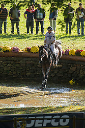 French Piggy (GBR) - Cooley Dream Extreme<br /> Cross country 6 years old horses<br /> Mondial du Lion - Le Lion d'Angers 2014<br /> © Dirk Caremans<br /> 18/10/14