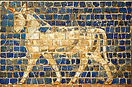 Aurochs relief pictures on glazed bricks from the Ishtar Gate, Babylon, Iraq constructed in about 575BC by order of King Nebuchadnezzar II on the north side of the city. Dedicated to the Babylonian goddess Ishtar, the monumental gate joined the inner & outer walls of Babylon it was one of the Seven Wonders of the ancient world. Istanbul Archaeological Museum. .<br /> <br /> If you prefer to buy from our ALAMY PHOTO LIBRARY  Collection visit : https://www.alamy.com/portfolio/paul-williams-funkystock/babylon-antiquities.html  Type -    Istanbul    - into the LOWER SEARCH WITHIN GALLERY box to refine search by adding background colour, place, museum etc<br /> <br /> Visit our ANCIENT WORLD PHOTO COLLECTIONS for more photos to download or buy as wall art prints https://funkystock.photoshelter.com/gallery-collection/Ancient-World-Art-Antiquities-Historic-Sites-Pictures-Images-of/C00006u26yqSkDOM