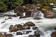 Spring runoff in Silverhope Creek in Silver Lake Provincial Park near Hope, British Columbia, Canada