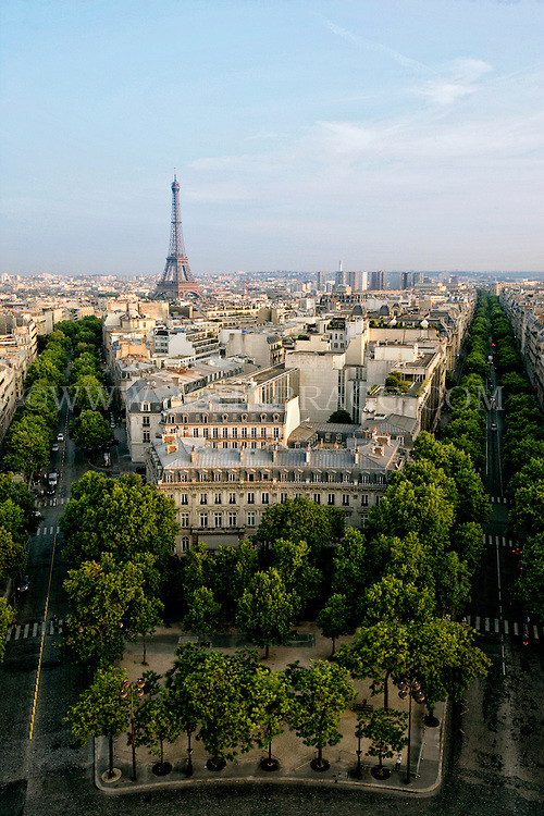 Elevated view of the Paris Skyline, France (Vertical).