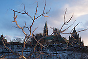 Parliament Hill in Ottawa as seen from Major's Hill Park.