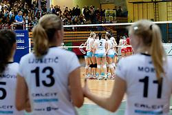 Team Calcit Kamnik celebrate during volleyball match between Nova KBM Branik Maribor and Calcit Kamnik in final game of Slovenia Volleyball Cup, on Januar 4, 2012 at Sportna Dvorana, Kamnik, Slovenia. Nova KBM Branik Maribor won 3:2. (Photo By Matic Klansek Velej / Sportida)