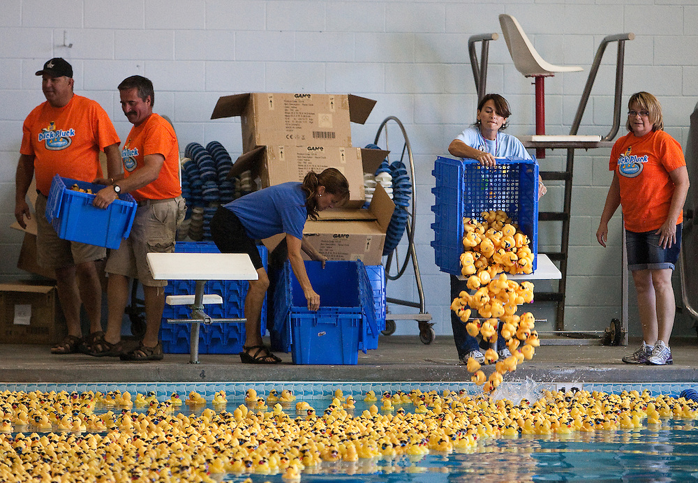 The swimming pool is filled with rubber ducks Saturday during the Tom Dinsdale Automotive/Leadership Tomorrow Duck Pluck at the Grand Island YMCA . About 6,600 ducks were adopted out for the 10th annual Leadership Tomorrow fundraiser, according to Tammy Morris, executive director of Leadership Tomorrow. (Independent/Matt Dixon)