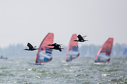 Day two Delta Lloyd Regatta  2015 (26/30 May 2015). Medemblik - the Netherlands.