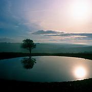 Reflection of sunlight on lake