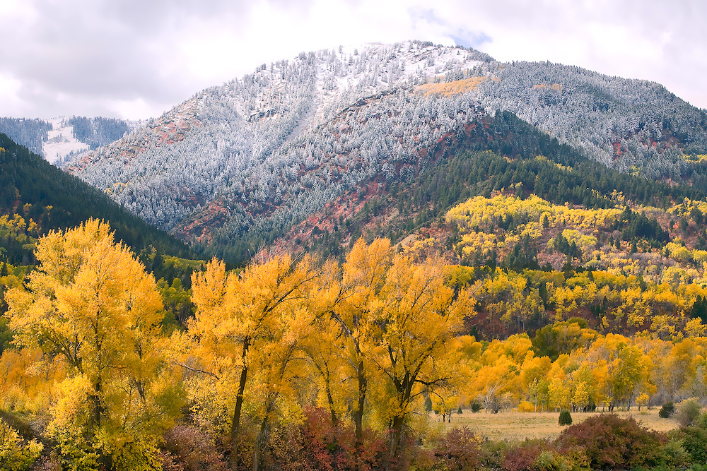 Autumns colors are soon to charge to winter snow near Palisades Reservoir, Idaho.