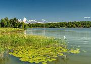 Mrągowo 2019-08-15. Jezioro Czos.