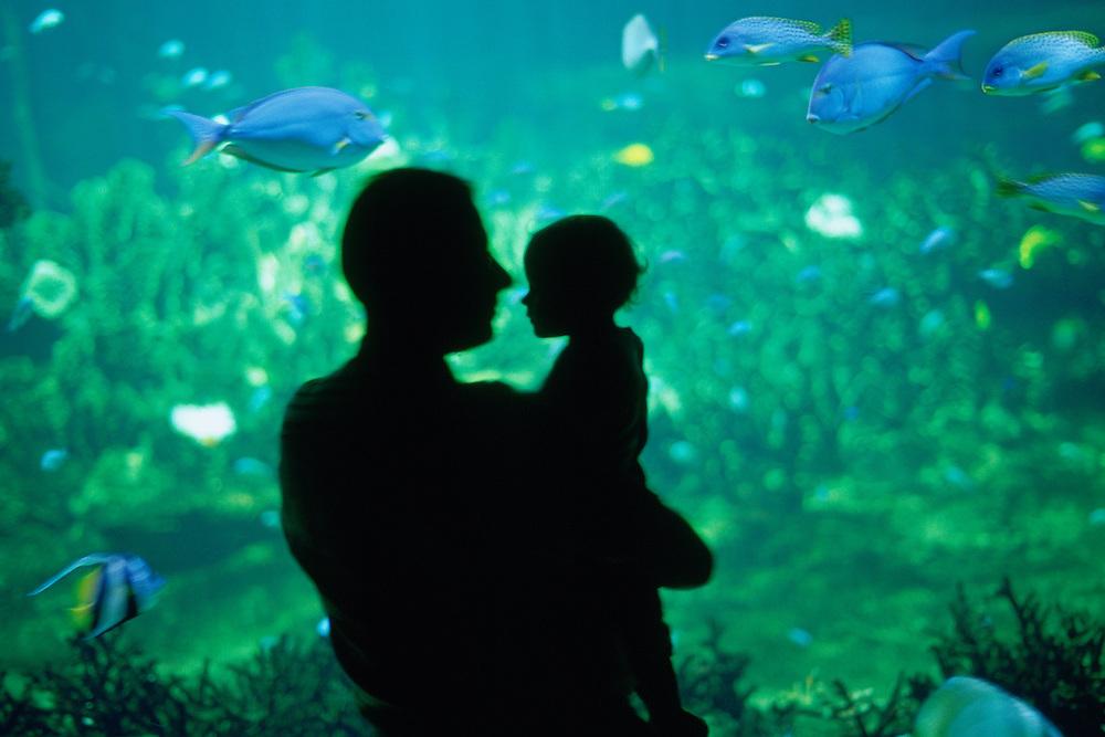 Homme et son enfant devant un aquarium de Nausicaä, Centre National de la Mer, Boulogne-sur-Mer, Nord-Pas-de-Calais, France.<br /> Man and his child in front of an aquarium of Nausicaä, National Sea Centre, Boulogne-sur-Mer, Nord-Pas-de-Calais region.
