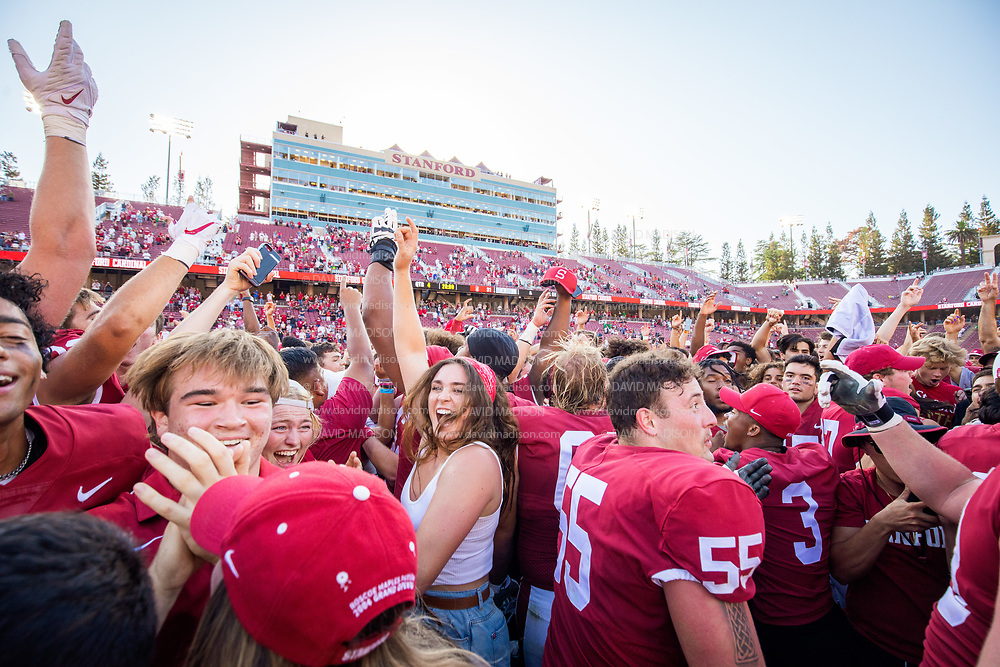 PALO ALTO, CA - OCTOBER 2:  Stanford Cardinal football players including Drake Metcalf #55  and fans celebrate on the field after the Stanford's 31-24 overtime victory over the Oregon Ducks in a Pac-12 college football game on October 2, 2021 at Stanford Stadium in Palo Alto, California.  (Photo by David Madison/Getty Images)