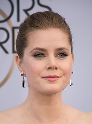 January 27, 2019 - Los Angeles, California, U.S - Amy Adams at the red carpet of the 25th Annual Screen Actors Guild Awards held at the Shrine Auditorium in Los Angeles, California, Sunday January 27, 2019. (Credit Image: © Prensa Internacional via ZUMA Wire)