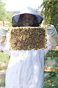 Isy Large checking the bee hives at Hares Farm. CREDIT: Vanessa Berberian for The Wall Street Journal<br /> UKFARM-Hares Farm