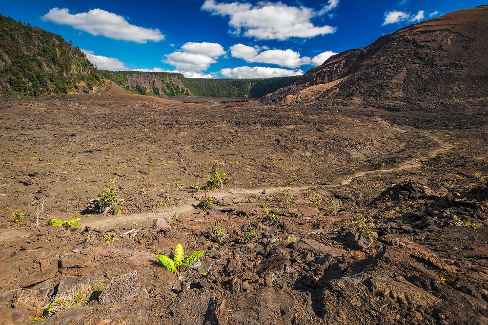 Hikers on the Kilauea Iki trail in the caldera, Hawaii Volcanoes National Park, Hawaii USA