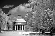 Light streams across the Lawn at the University of Virginia in Charlottesville, Va. Photo/Andrew Shurtleff Photography, LLC