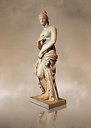 This 2nd to 3rd century Italian marble statue of Venus (Aphrodite) is the result of a fit between the bottom of an ancient body, a torso of the XVI century and an ancient face and top of head. The statue follows the style of a modest Aphrodite, known by other Roman replicas are copies of 3rd century BC Hellanistic Greek statues now lost.<br /> Borghese collection, Louvre Museum, Paris. Inv No. MR. 279 (Usual No Ma 369) .<br /> <br /> If you prefer to buy from our ALAMY STOCK LIBRARY page at https://www.alamy.com/portfolio/paul-williams-funkystock/greco-roman-sculptures.html- Type -    Louvre    - into LOWER SEARCH WITHIN GALLERY box - Refine search by adding a subject, place, background colour,etc.<br /> <br /> Visit our CLASSICAL WORLD HISTORIC SITES PHOTO COLLECTIONS for more photos to download or buy as wall art prints https://funkystock.photoshelter.com/gallery-collection/The-Romans-Art-Artefacts-Antiquities-Historic-Sites-Pictures-Images/C0000r2uLJJo9_s0c