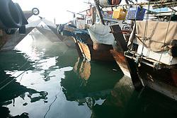Merchant dows anchor at the Dubai Creek, UAE, November 2, 2006. Photo by Silvia Baron / i-Images.