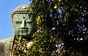 The Great Buddha at Kamakura Japan