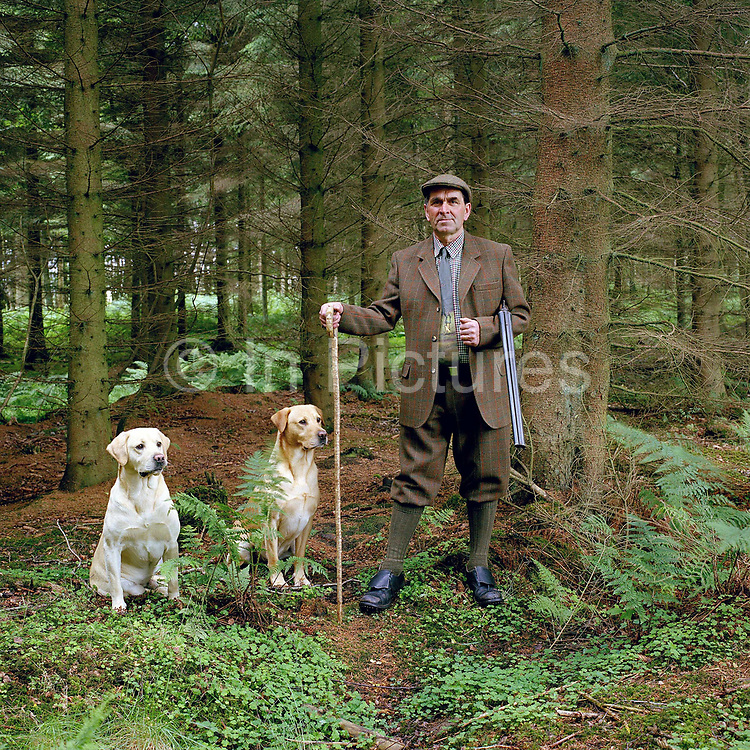 Portrait of gamekeeper Ronnie Grigor and his dogs Jasper and Max in Moor Road Wood, Fala estate, Midlothian, Scotland. Fala estate supplies game such as roe deer (venison), hares, rabbits and wood pigeons to local restaurants.