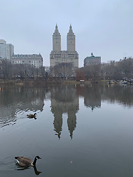 Upper West Side View of Central Park