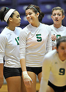 The Elyria Catholic varsity volleyball team in the Regional Finals on November 6, 2010 in Barberton.