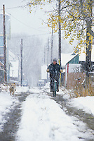 A young woman cruises town with her puppy during a snowfall in Crested Butte, Colorado.