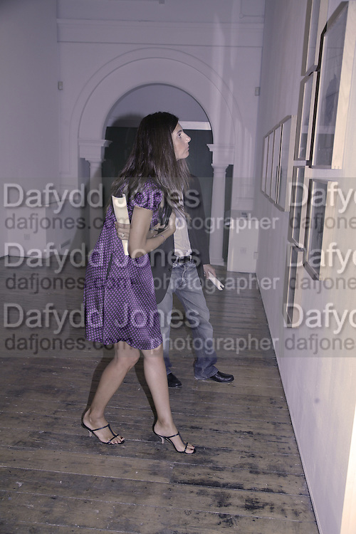 Francesca Brignone, Al Taylor private view. Haunch of Venison. London. 13 September 2006. ONE TIME USE ONLY - DO NOT ARCHIVE  © Copyright Photograph by Dafydd Jones 66 Stockwell Park Rd. London SW9 0DA Tel 020 7733 0108 www.dafjones.com