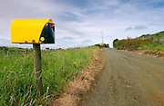 Modern plastic mailbox, North Island, New Zealand