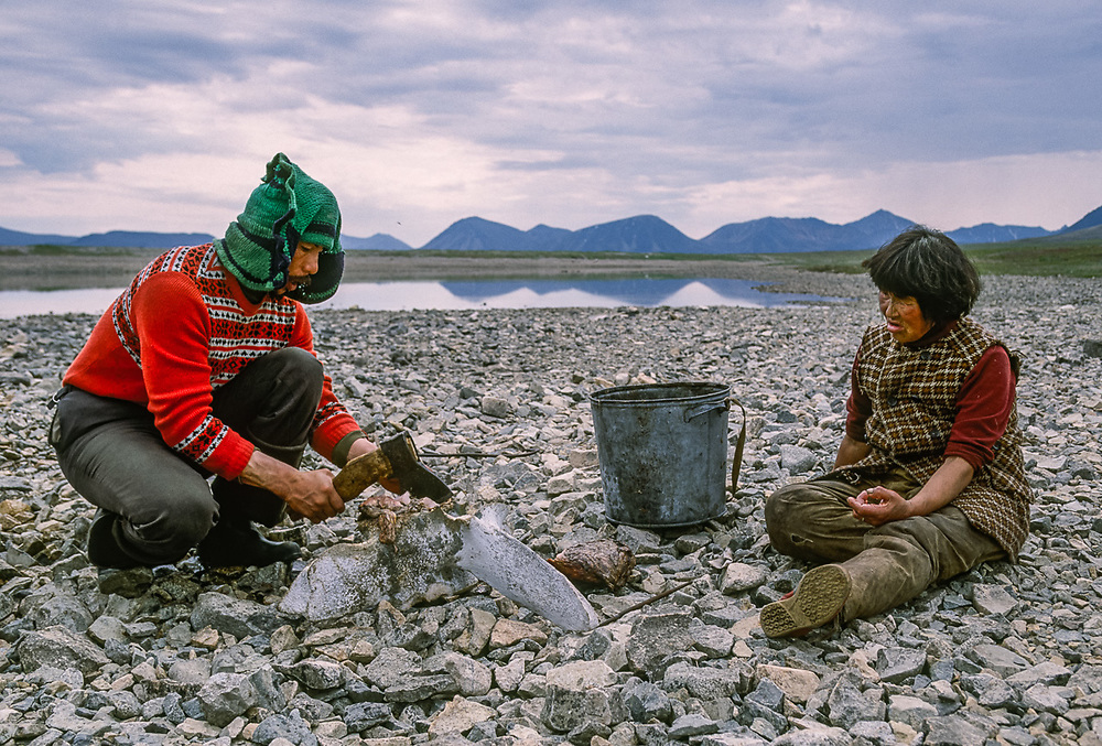 Butchering walrus meat for dogs, Chukchi reindeer camp, Senyavina Strait, Chukotsk Peninsula, NE Russia, 1992