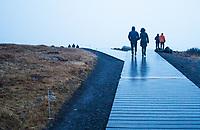 Gullfoss  Iceland. ©2019 Karen Bobotas Photographer