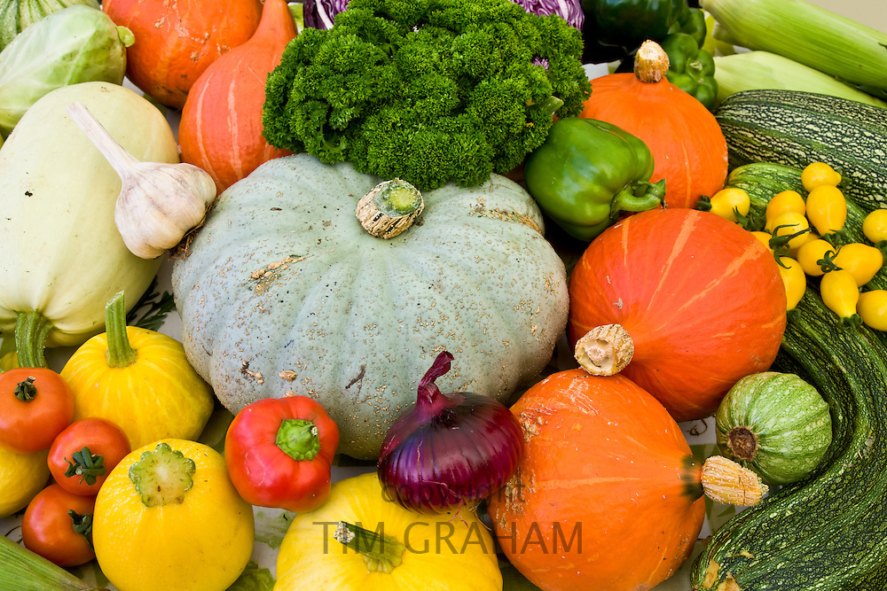 Vegetables on sale at farmers market in Devon, England. Vitamin-rich onions garlic squash marrow tomatoes parsley pepper marrow leeks