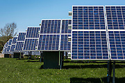 Rows of photovoltaic solar panels in a field for electricity production.