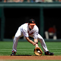 01 July 2007:  Baltimore Orioles second baseman Chris Gomez (14) in action against the Los Angeles Angels.  The Angels defeated the Orioles 4-3 at Camden Yards in Baltimore, MD.   ****For Editorial Use Only****
