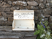 A roadside stall in Grinton Village, Swaledale, United Kingdom on 28th May 2018. Swaledale is the valley of the river Swale and is one of the northernmost dales valleys in the Yorkshire Dales National Park