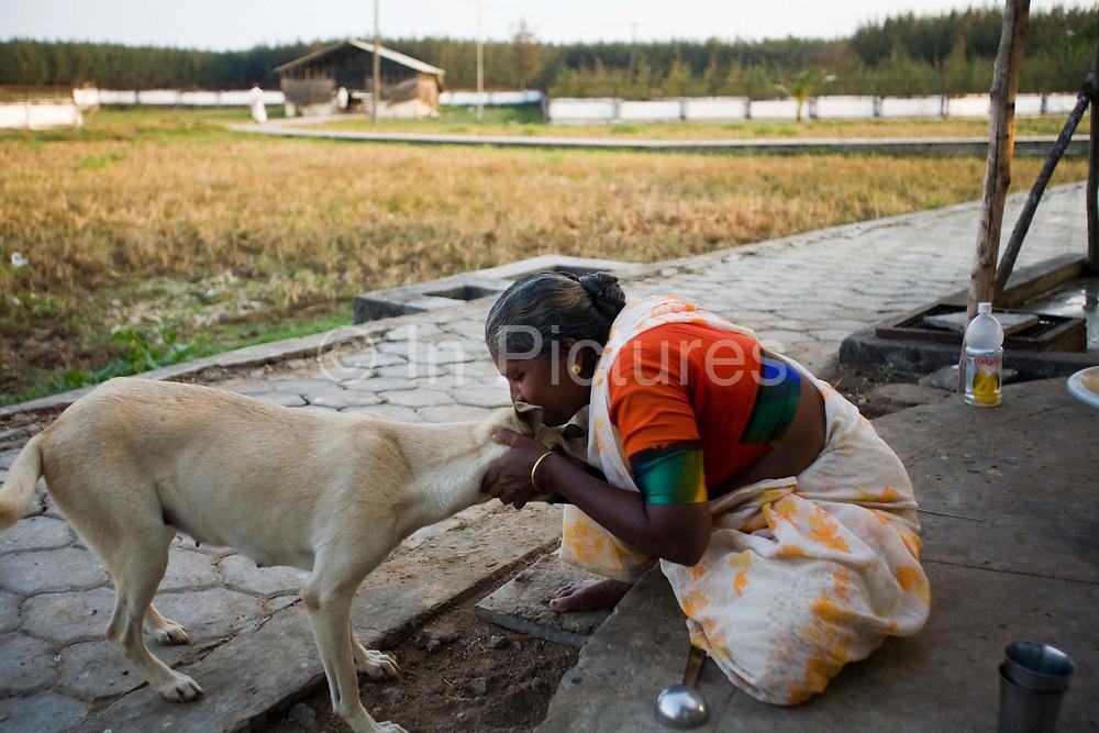 Meena, 65, an elderly resident,  makes a fuss of one of the villages two dogs. Tamaraikulum Elders village, Tamil Nadu, India