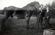 young adult farmers posing with horse 1930s Holland