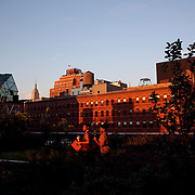 Views from The High Line, Manhattan, New York during the late afternoon sunset. The High Line is a 1-mile New York City linear park built on a 1.45-mile section of the former elevated New York Central Railroad spur called the West Side Line, which runs along the lower west side of Manhattan; it has been redesigned and planted as an aerial greenway. New York, USA.  Photo Tim Clayton