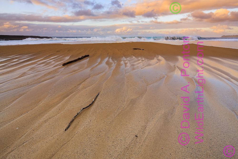 Breaking wave, sandy beach, Lumiha'i Beach, Kauai, Hawaii, © David A. Ponton