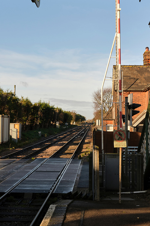 View across the level crossing at Trimley Station at the end of platform 1. The relatively recent addition of the additional track on the left to increase freight capacity on the line.<br /> <br /> Photo by Jonathan J Fussell, COPYRIGHT 2020
