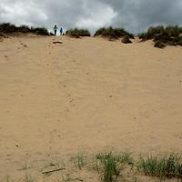 Europe, Ireland, Brittas Bay. Large dune at Brittas Bay.