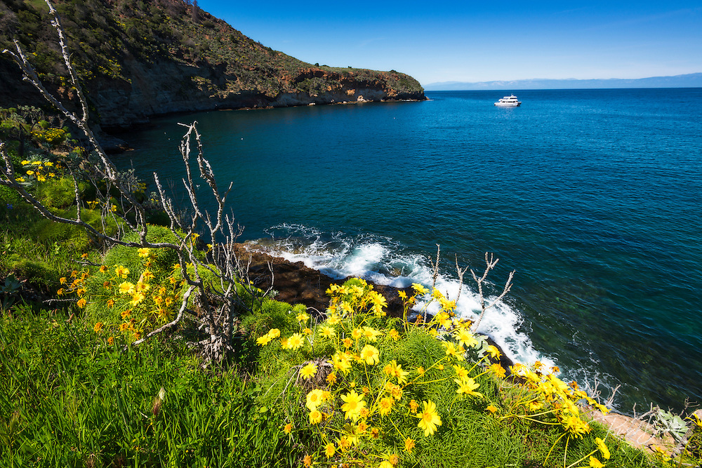 Pelican Bay, Santa Cruz Island, Channel Islands National Park, California USA